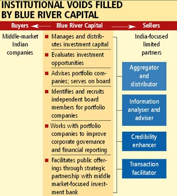Blue River Capital: Institutional Voids